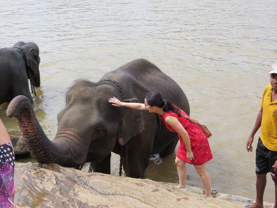 invite-to-paradise-holiday-honeymoon-sri-lanka-couple-october-35.jpg