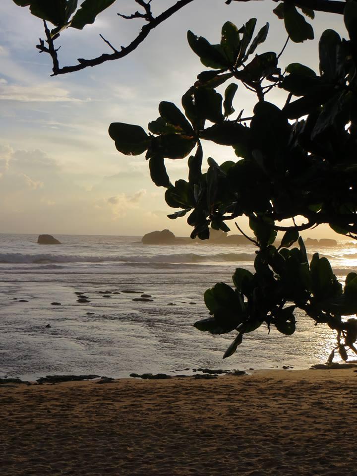 invite-to-paradise-holiday-honeymoon-sri-lanka-couple-october-14.jpg