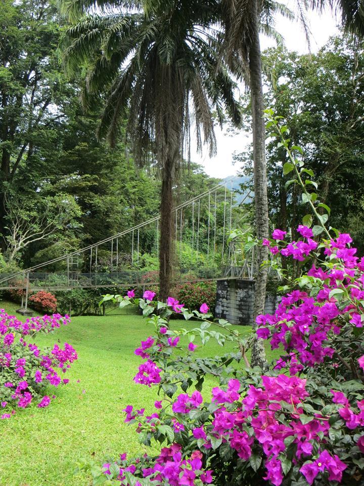 invite-to-paradise-holiday-honeymoon-sri-lanka-couple-october-44.jpg