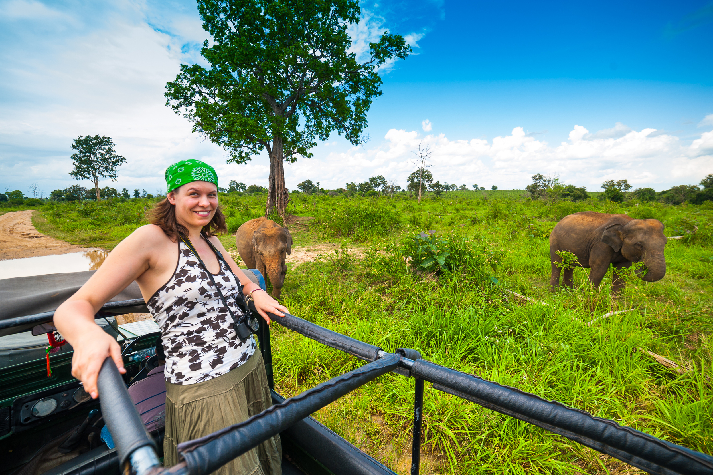 As well as leopards you will also see other Sri Lankan wildife on this diverse safari.