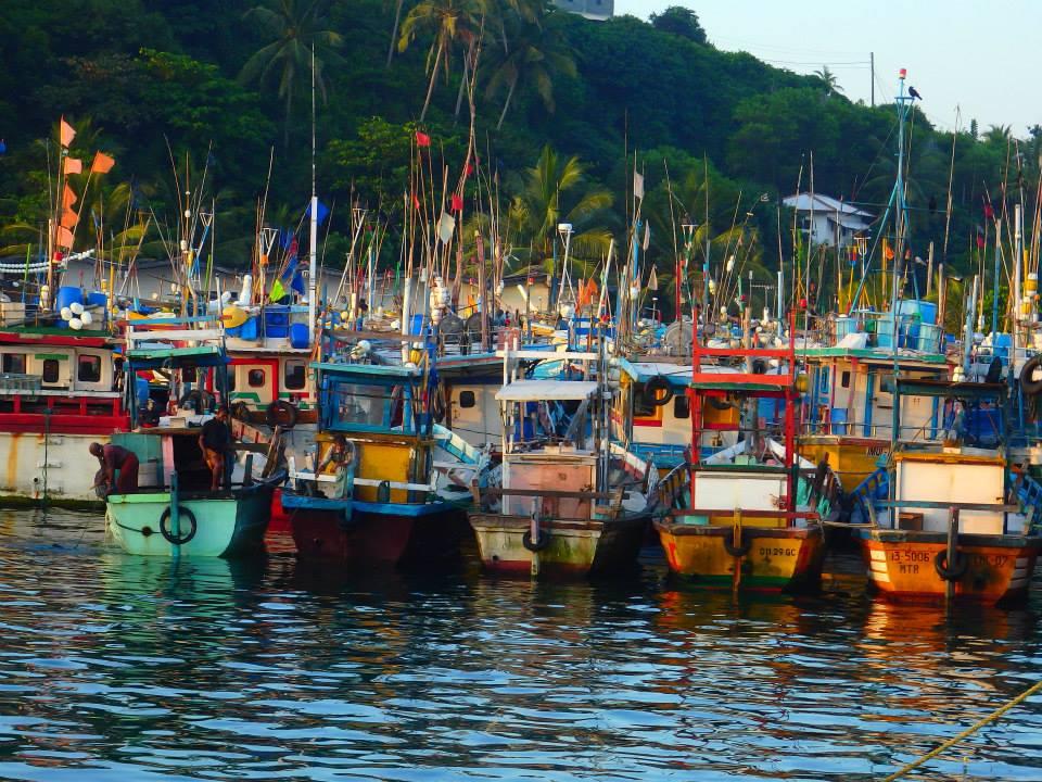invite-to-paradise-customer-review-claire-simon-honeymoon-sri-lanka-fishing-boats.jpg