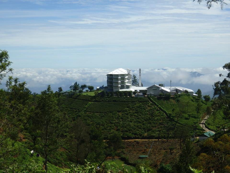 invite-to-paradise-customer-review-claire-simon-honeymoon-sri-lanka-tea-hotel.jpg