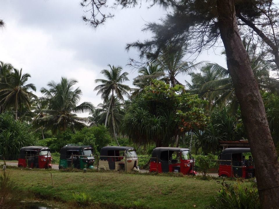 invite-to-paradise-customer-review-claire-simon-honeymoon-sri-lanka-tuk-tuk-2.jpg