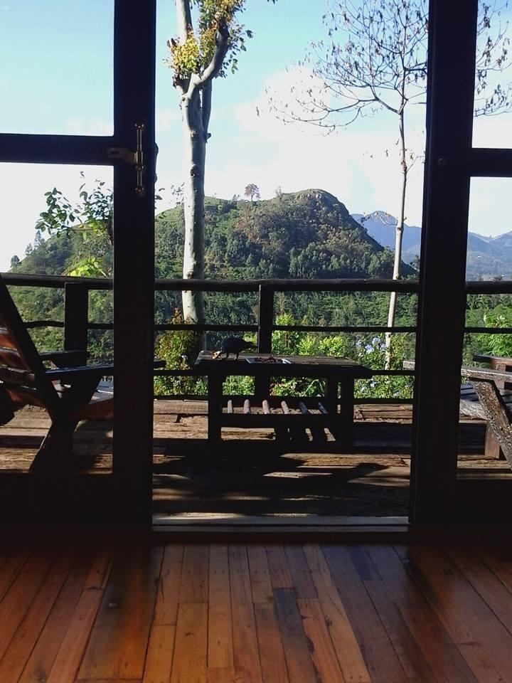 invite-to-paradise-customer-review-wendy-frank-honeymoon-sri-lanka-11.jpg