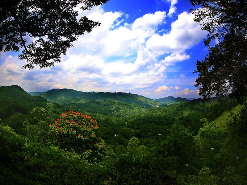 Invite-to-Paradise-Sri-Lanka-holiday-honeymoon-hotel-tea-plantation-boutique-the-secret-ella-view1.jpg