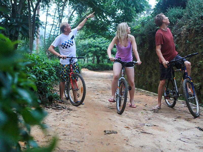 Invite-to-Paradise-Sri-Lanka-holiday-honeymoon-hotel-tea-plantation-boutique-the-secret-ella-bike-riding-1.jpg