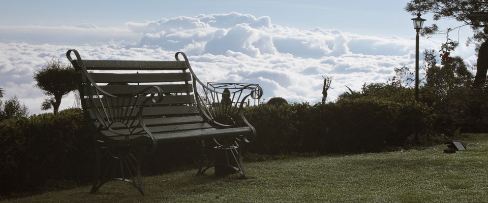 invite-to-paradise-sri-lanka-holidays-honeymoons-heritance-tea-plantation-hotel-tea-factory-bench-on-the-clouds.jpg