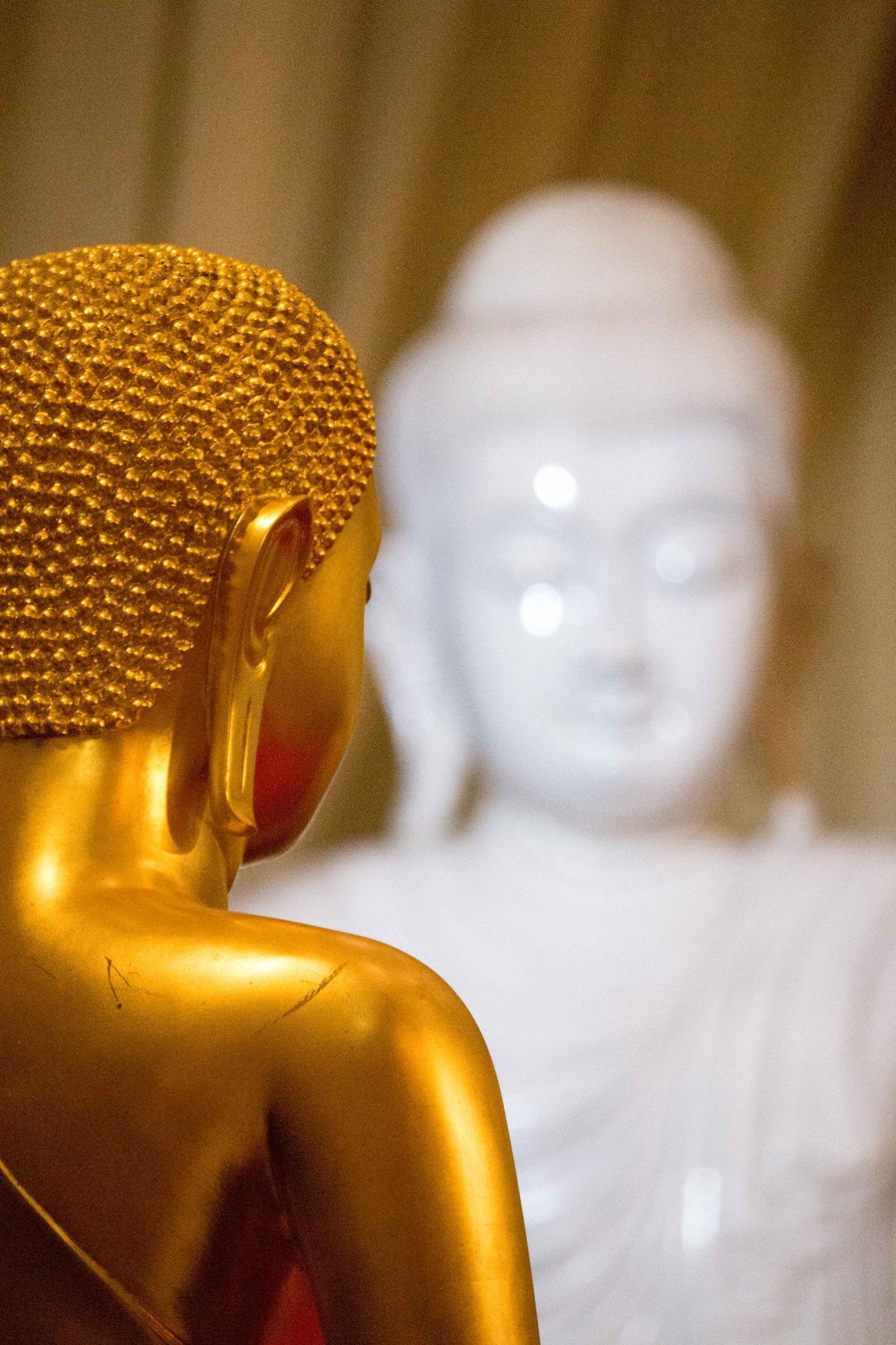 invite-to-paradise-sri-lanka-and-maldives-specialists-travel-agent-tour-operator-customer-review--feedback-joel-rhian-buddha-2.jpg