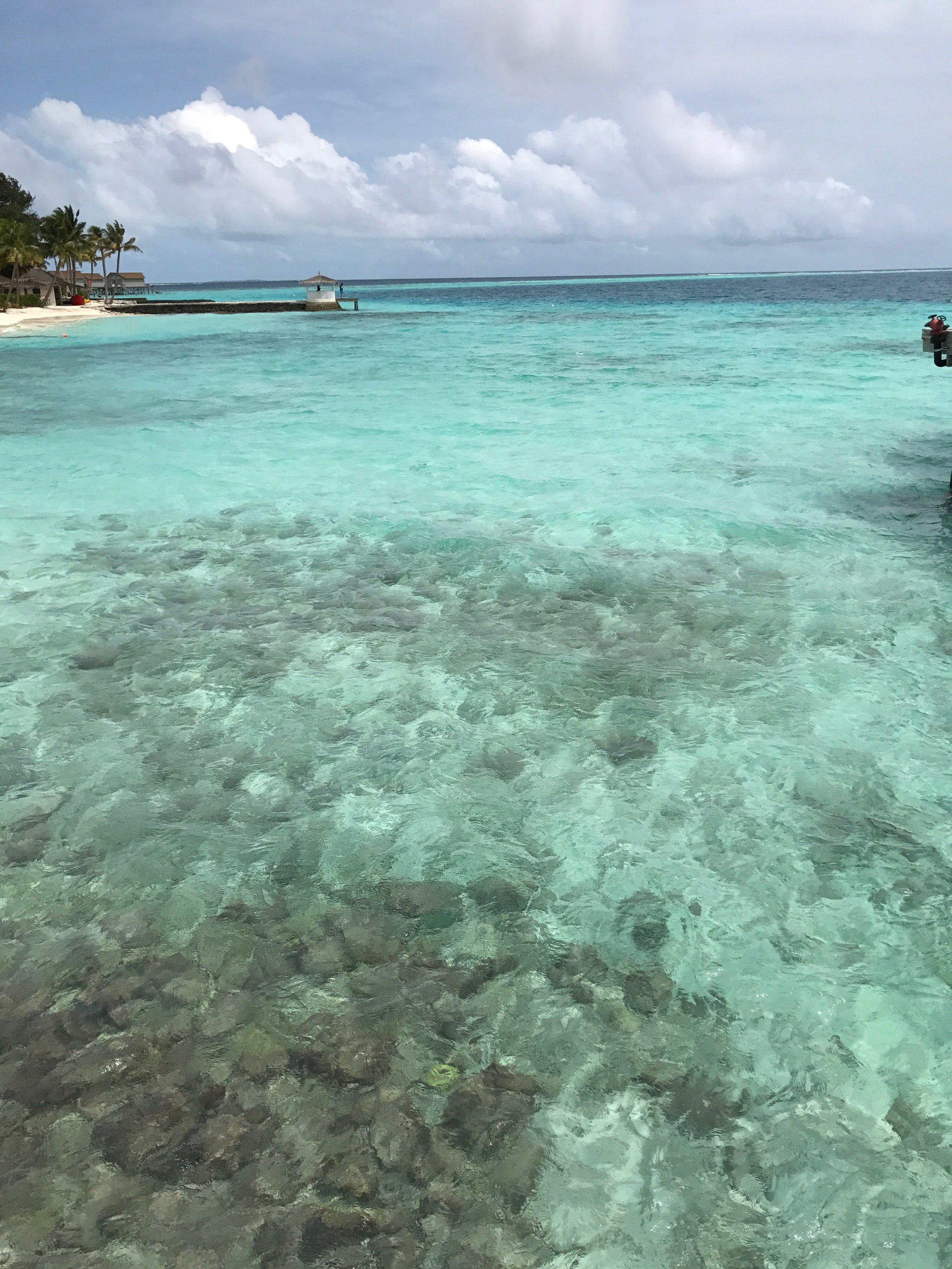invite-to-paradise-maldives-sri-lanka-specialists-experts-travel-agent-tour-operator-customer-feedback-lucas-emily-fenning-elephant-orphanage-centara-ras-fushi-ocean.jpg