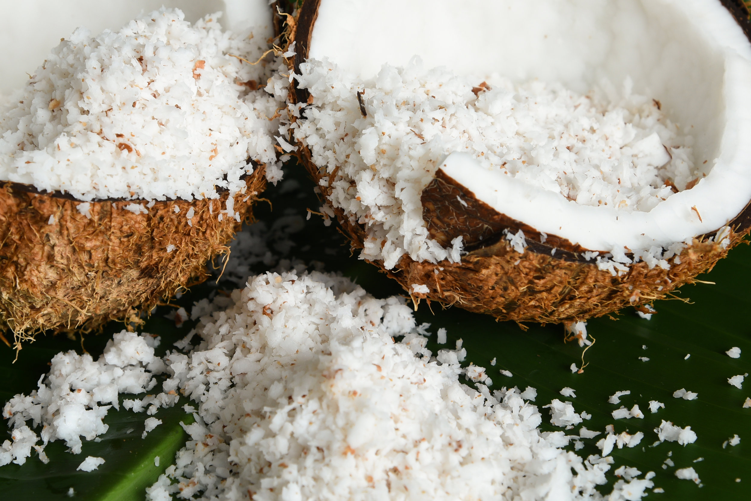 shutterstock_402654478.jpg - Close up of heap of grated organic coconut in a fresh coconut cut open, isolated on green banana leaf, Kerala India. main ingredient in Indian dishes..jpg