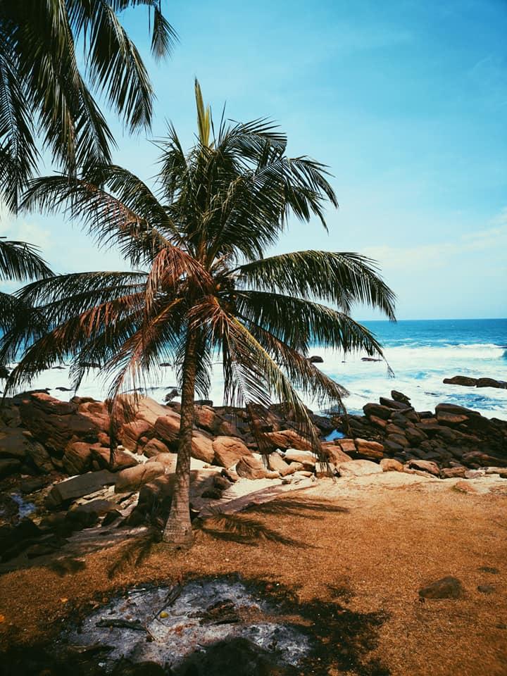 invite-to-paradise-sri-lanka-holiday-honeymoon-specialists-customer-feedback-elin-jordan-luce-paml-beach.jpg