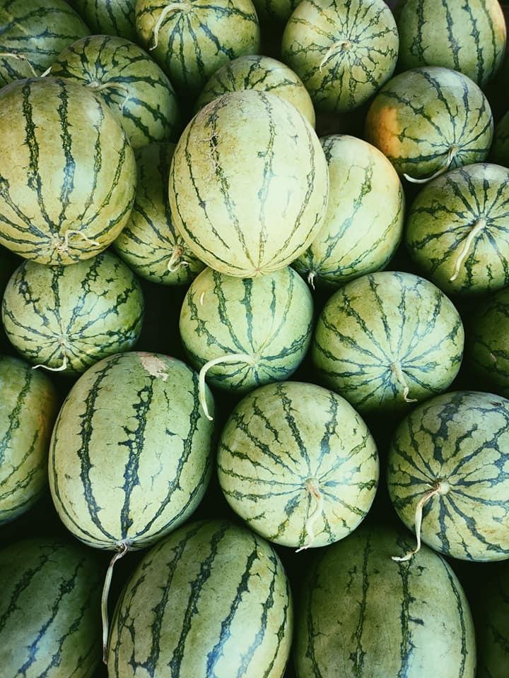 invite-to-paradise-sri-lanka-holiday-honeymoon-specialists-customer-feedback-elin-jordan-luce-watermelon.jpg