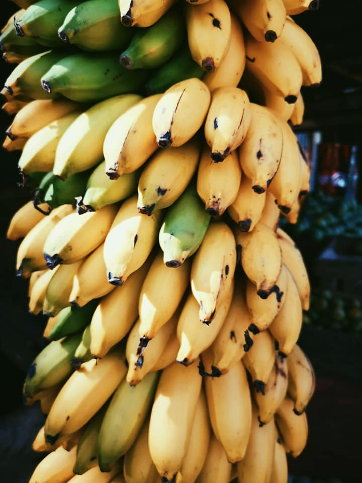 invite-to-paradise-sri-lanka-holiday-honeymoon-specialists-customer-feedback-elin-jordan-luce-banana.jpg