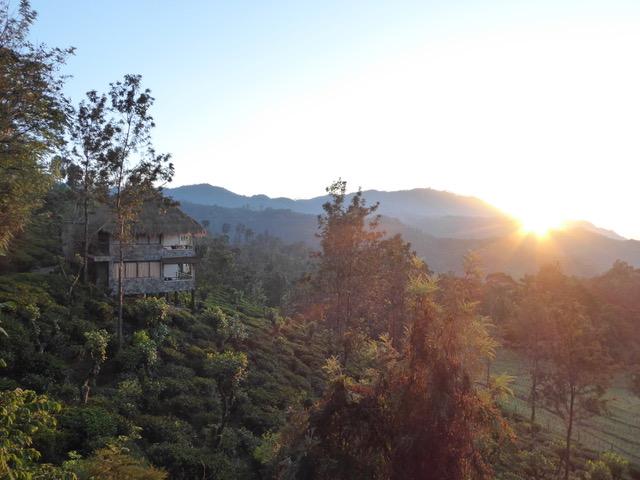 invite-to-paradise-sri-lanka-family-holiday-specialists-customer-feedback-pickering-98-acres-ella-view.jpeg