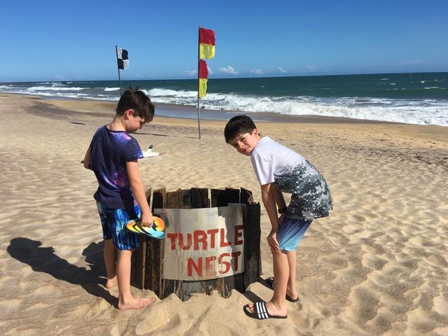 invite-to-paradise-sri-lanka-family-holiday-specialists-customer-feedback-pickering-sea-turtle-nest-beach.jpeg