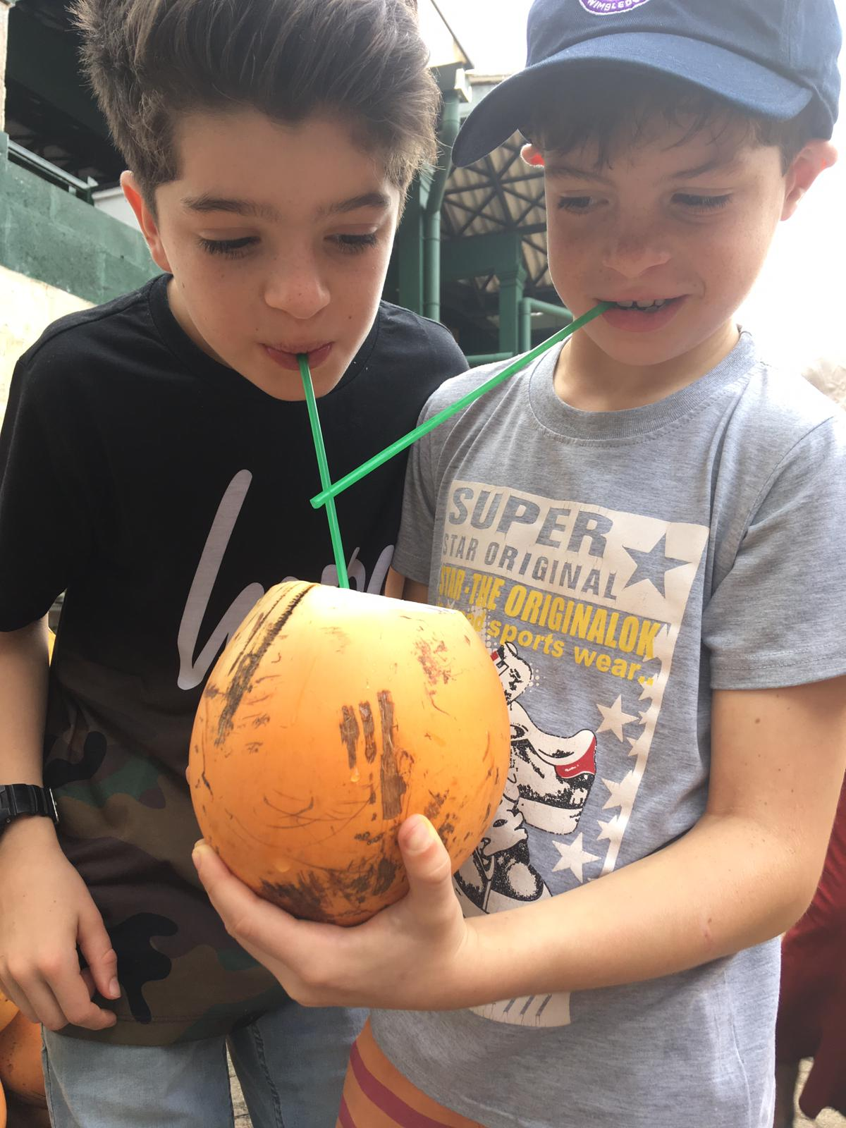 invite-to-paradise-sri-lanka-family-holiday-specialists-customer-feedback-pickering-king-coconuts.jpg