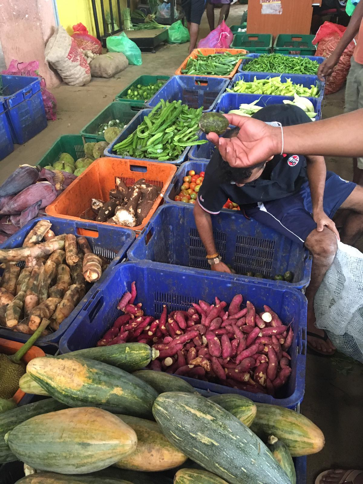 invite-to-paradise-sri-lanka-family-holiday-specialists-customer-feedback-pickering-market-vegetable.jpg