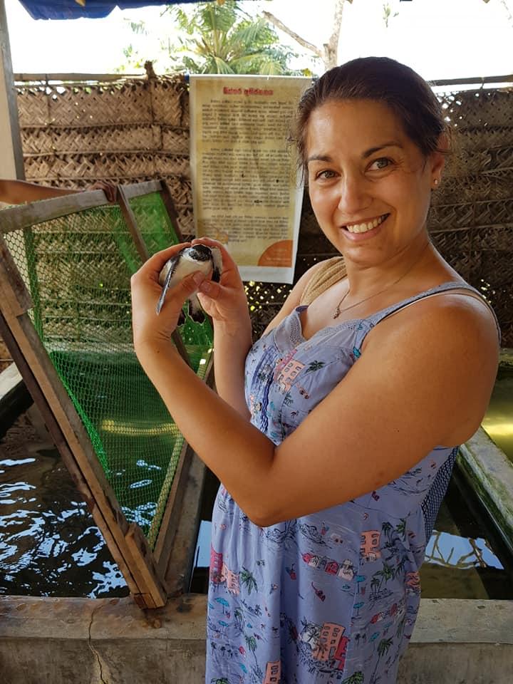 invite-to-paradise-sri-lanka-maldives-family-holiday-specialists-customer-feedback-scott-leanne-odell-sea-turtle-2.jpg