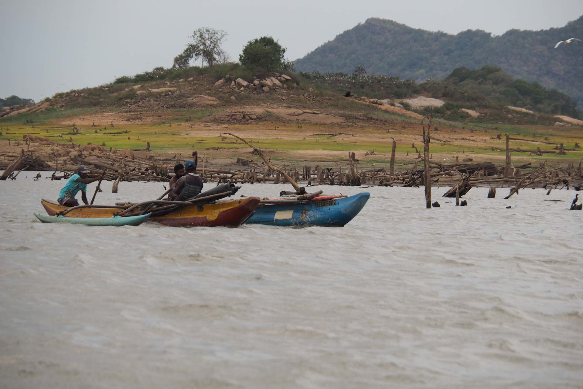 sri-lanka-gal-oya-boat-safariholiday-review-feedback-invite-to-paradise-quentin-kate-hulm.jpg