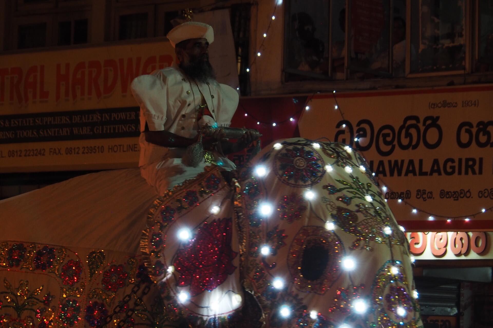 sri-lanka-kandy-perahera-elephants-holiday-review-feedback-invite-to-paradise-quentin-kate-hulm.jpg