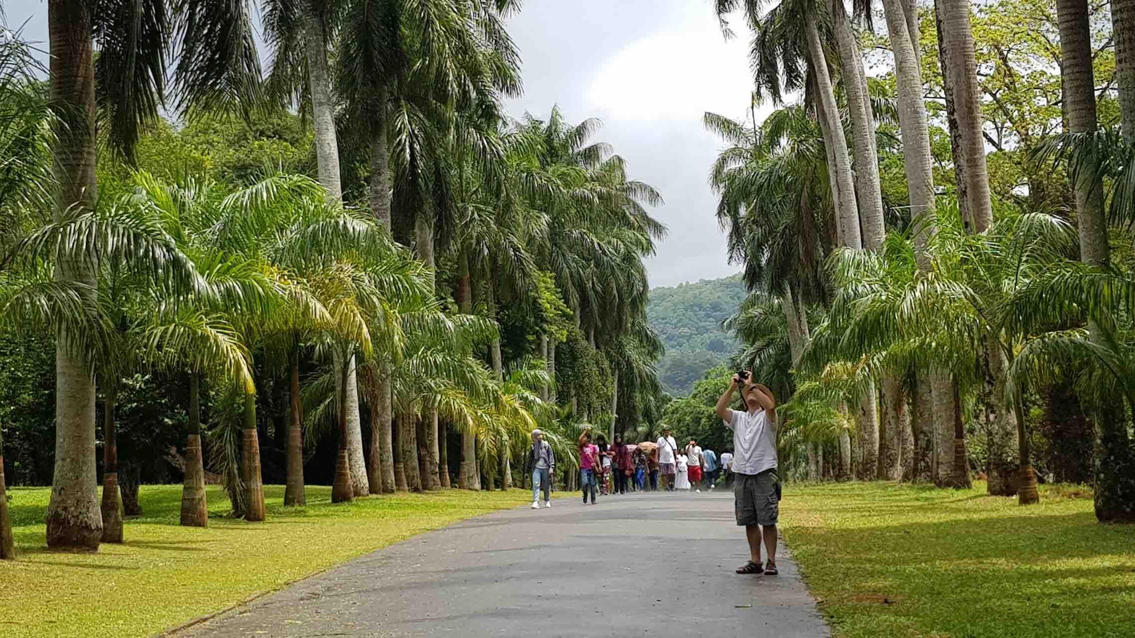 sri-lanka-kandy-royal-botanical-gardens-people-holiday-review-feedback-invite-to-paradise-quentin-kate-hulm.jpg
