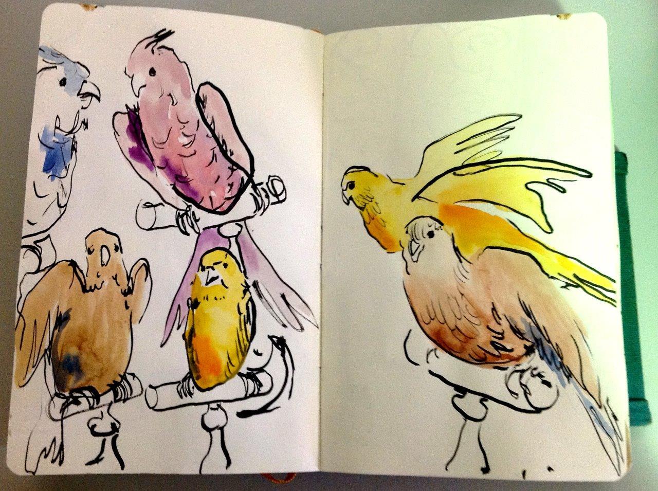 Deyrolle birdies.jpg