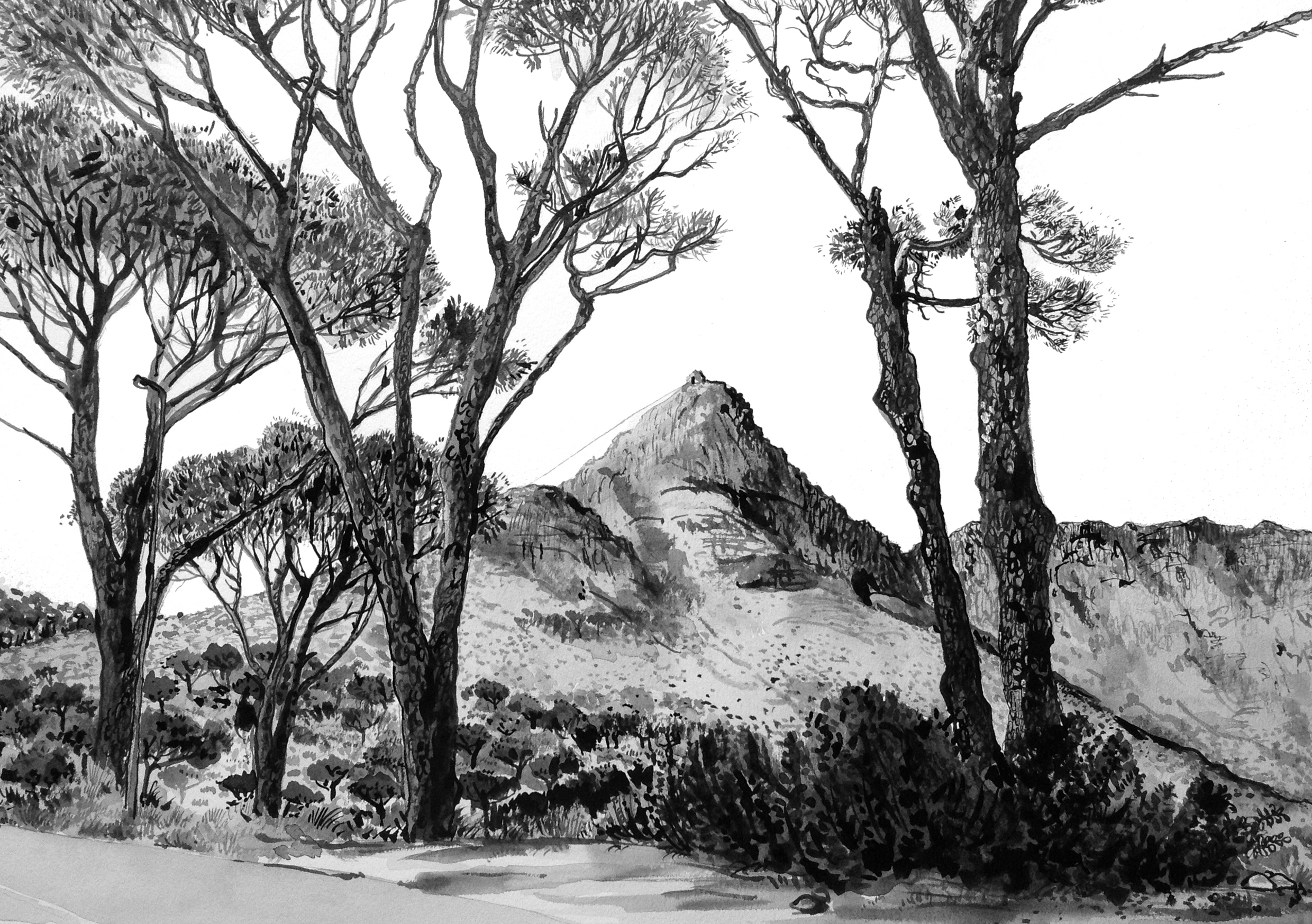 # 12 Kloof Road to Camps Bay