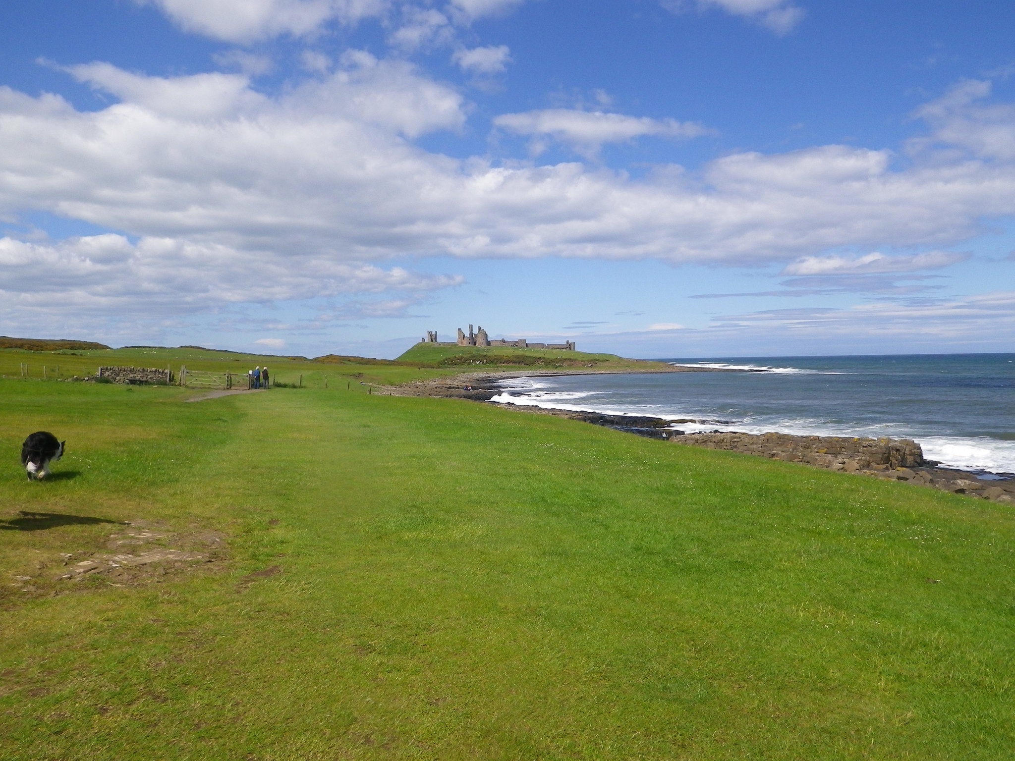 June: family holiday in Northumberland