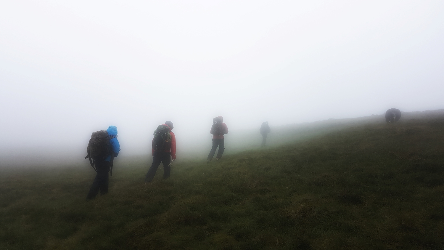 Wednesday 5th June: navigating in the mist