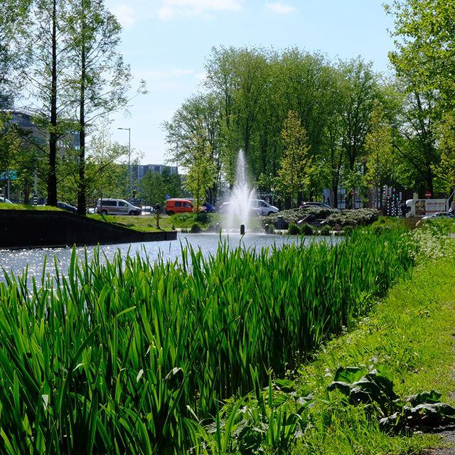 #Utrecht wat ben je #mooi. #lente #multipost