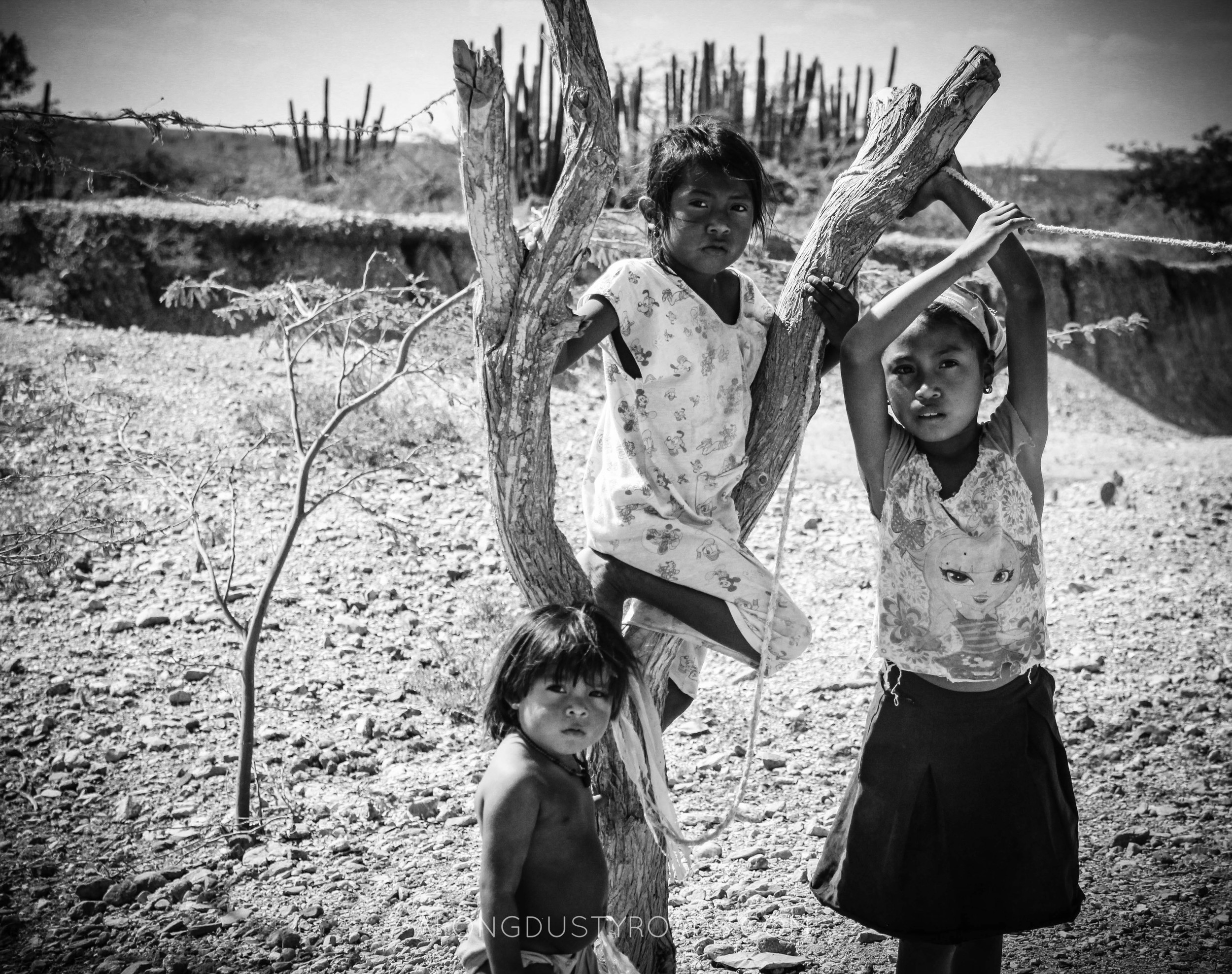 wayuu children la guajira colombia