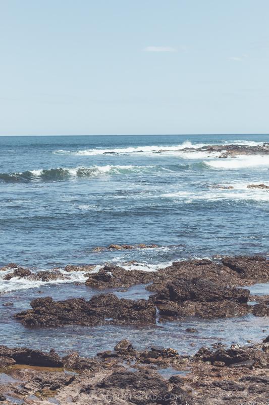 Things to do in Punta del Este Uruguay