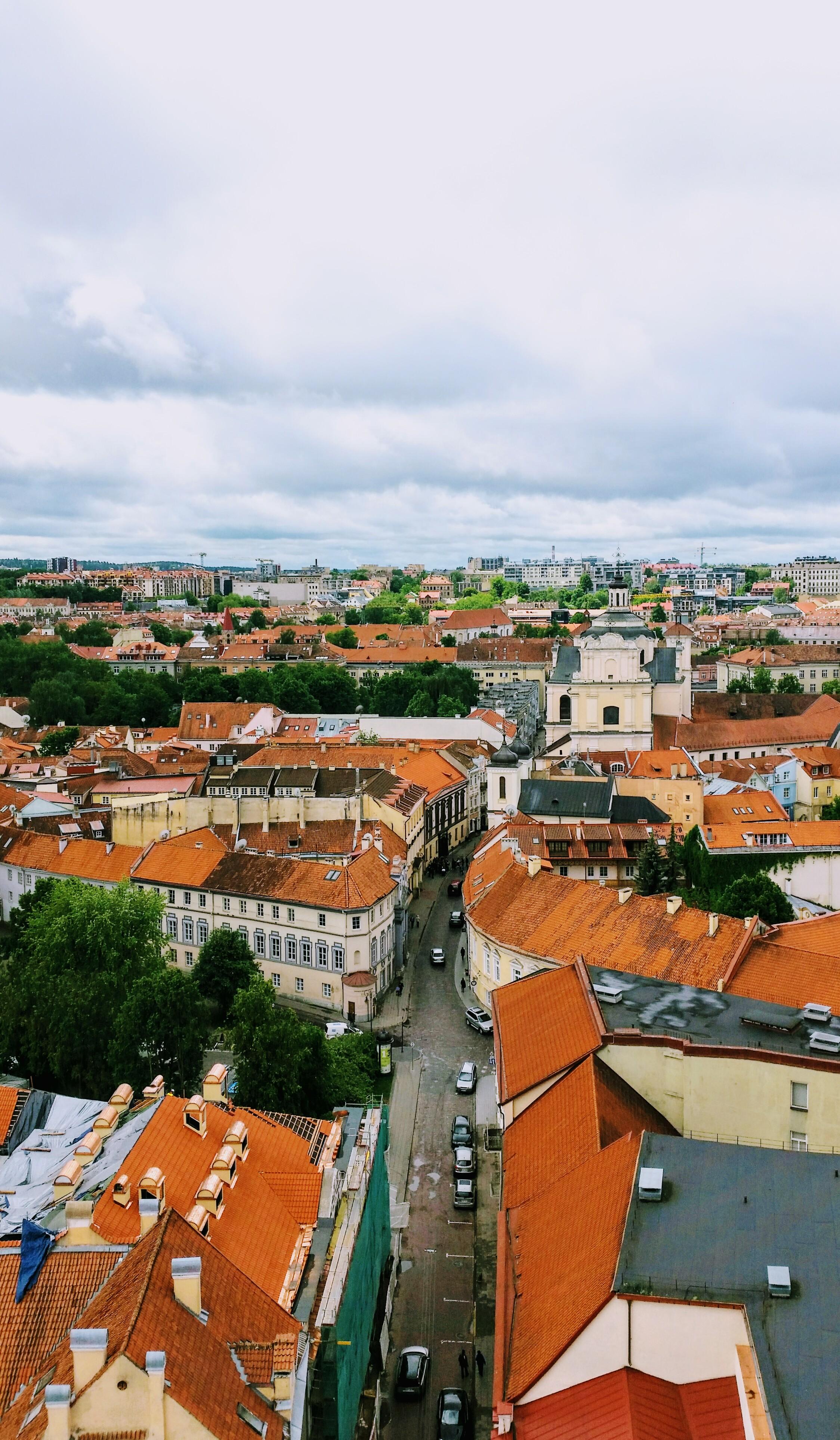 Lithuania Roof.jpg