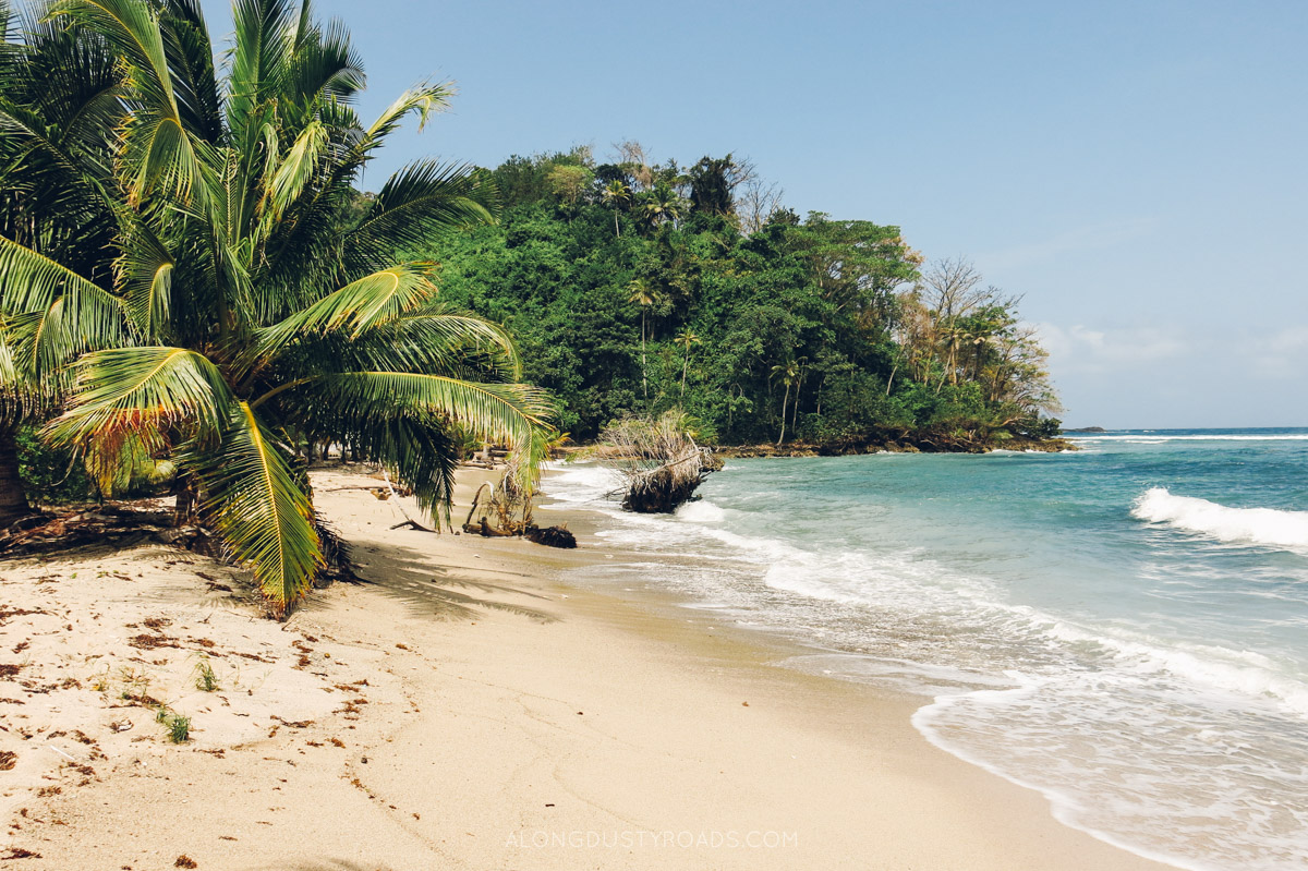 La Miel Panama - Colombia