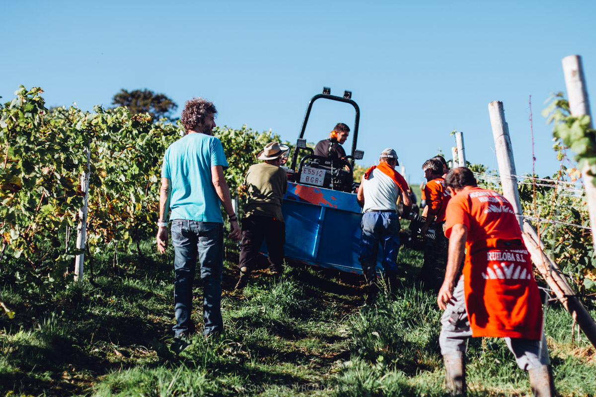 Things to do in Cantabria Spain - Harvest time in Cantabria