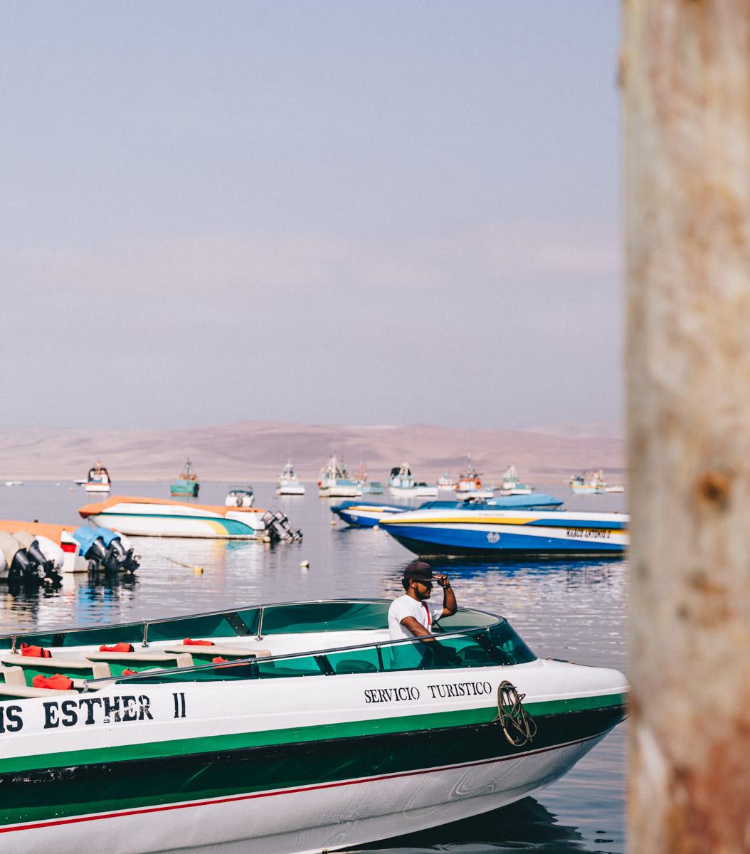 岛Ballestas之旅