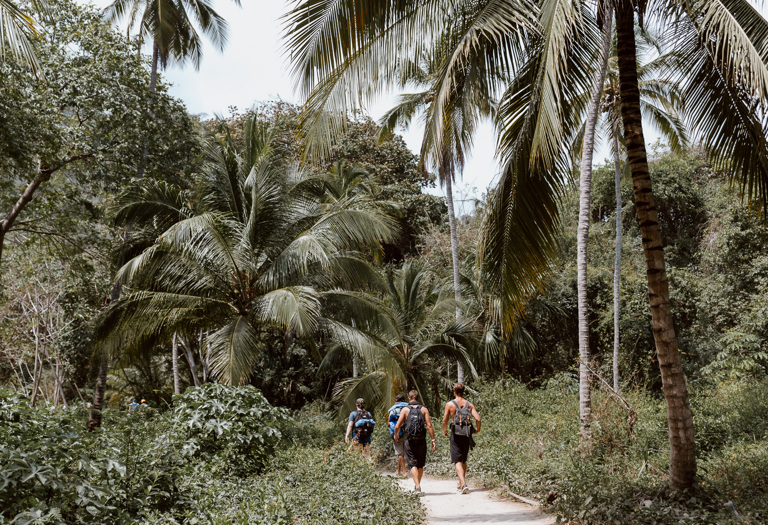 Tayrona National Park Hiking