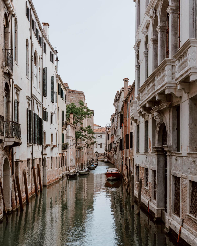 在威尼斯的运河