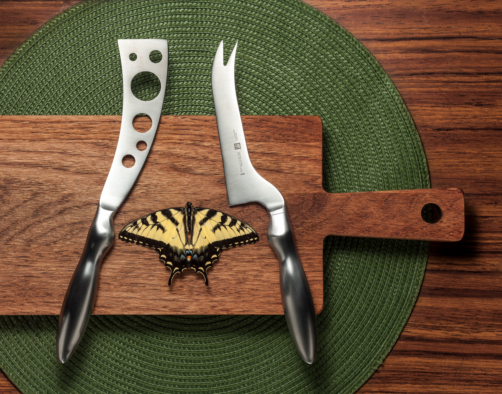 J-Ingraham-Amelia -Butterfly0132.jpg