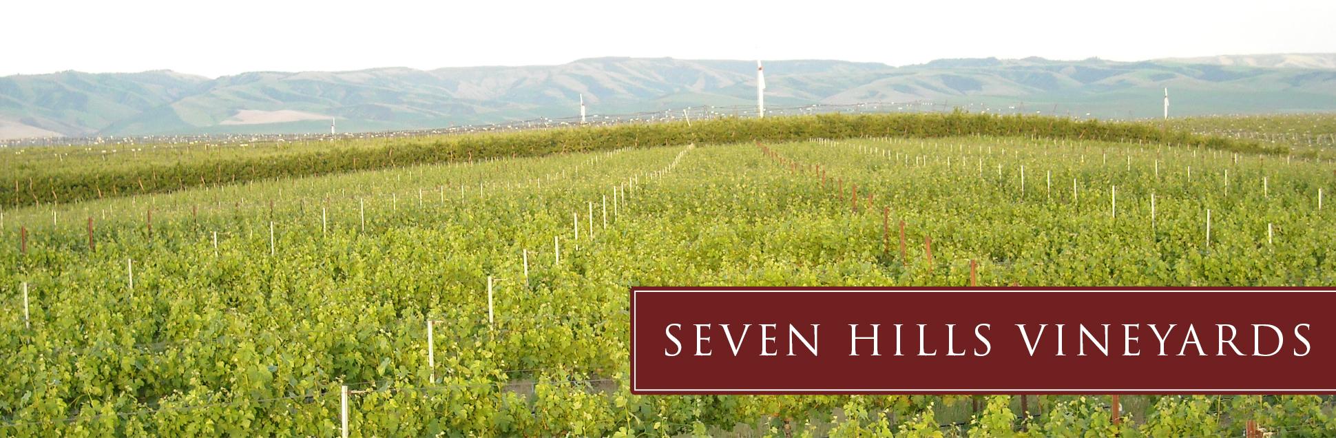 sh-vineyard-about.jpg
