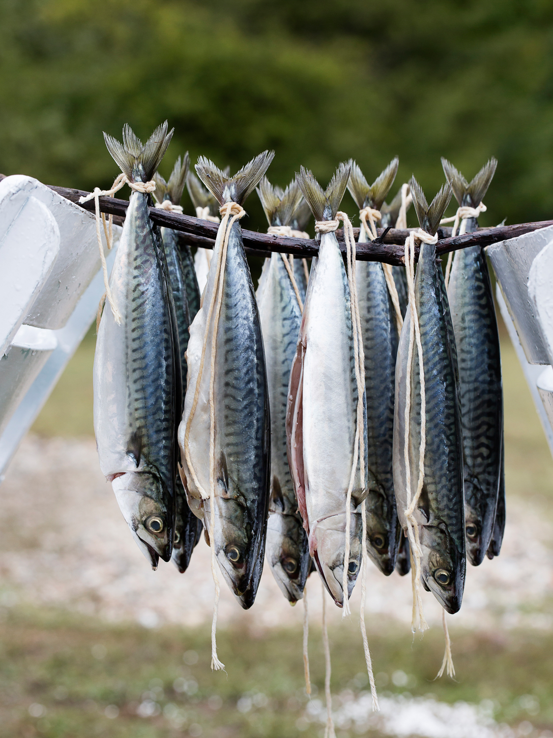 Smoking Mackerel - Ruhun Doysun I GRUNDIG