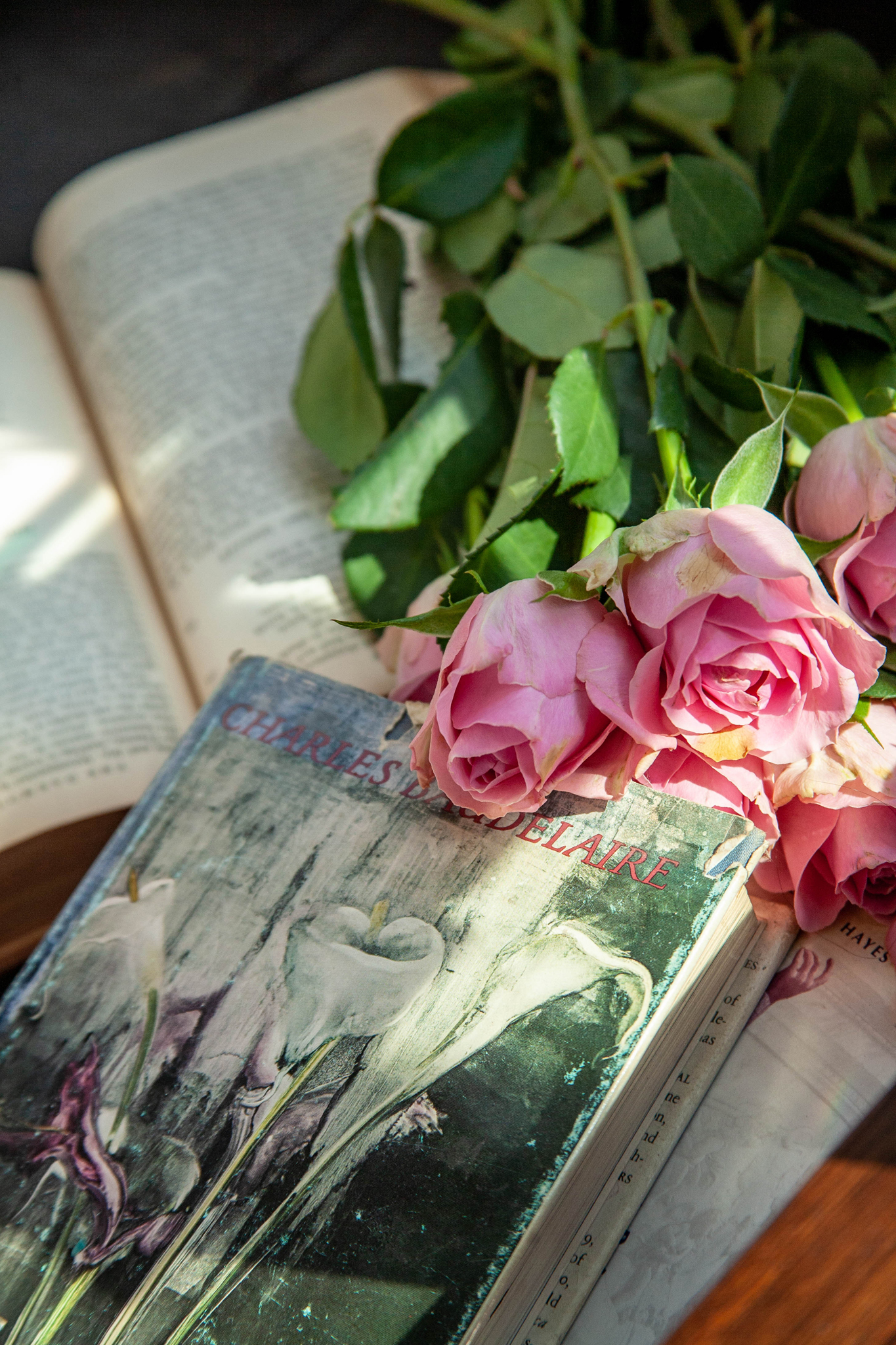 Roses and poetry