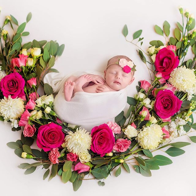Can't believe our sweet girl has already been with us for 4 weeks. In love with all of our newborn pictures from @amyluphotog 😍 . . . #newborn #amylu #babygirl #floral #photography #newbornphotography #newbornbaby #newborngirl #lovelysquares #babyphotography #newbornphotoshoot #projectnursery #maggiesue #homedecor #nursery #nurseryinspo #pregnant #motherhoodunplugged #joyfulmamas #floraldesign #roses #farmgirlflowers #mothersday #minted #birthannouncement #swaddle #feltbow #babybow #birthphotography