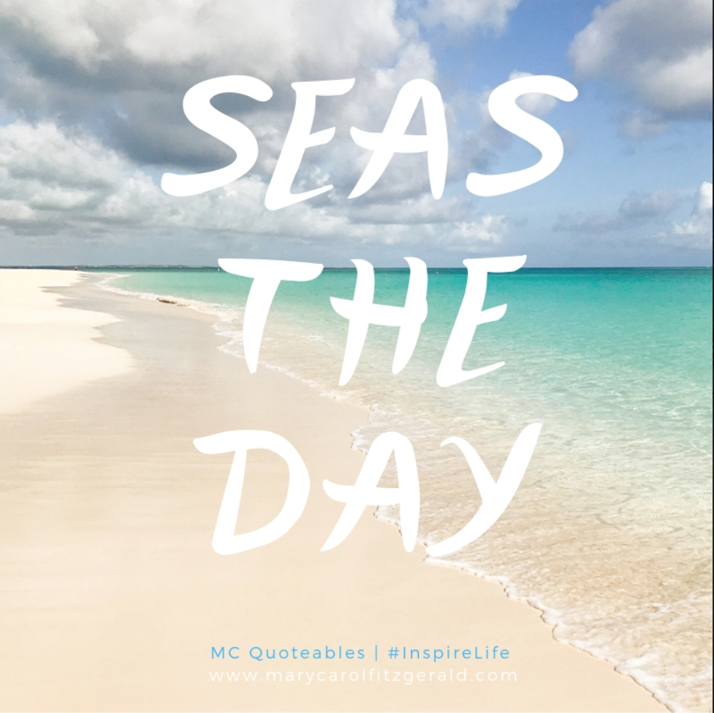 Seas The Day.png
