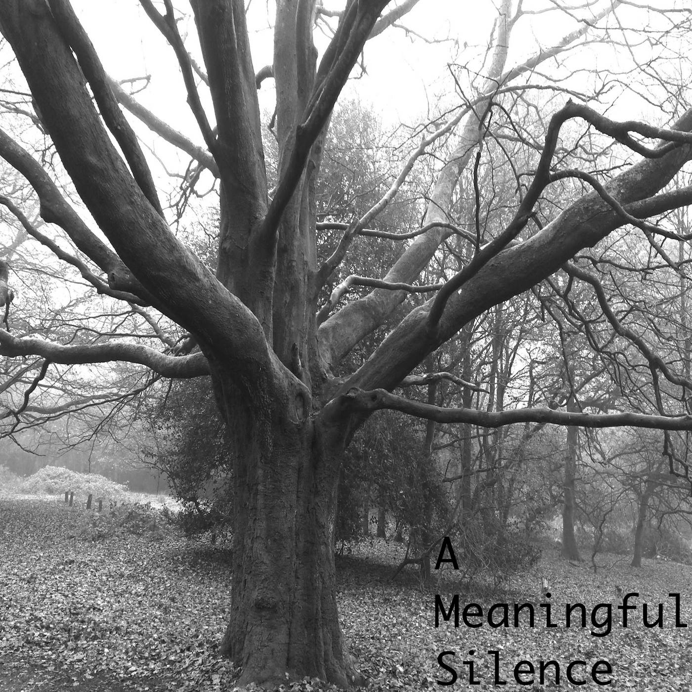 Over the last 3 weeks I have been very busy working with Kevin Buckland on an exciting new project. Today I am happy to unveil that project: A Meaningful Silence.  Recording in Leeds, Birmingham, and Bath we have released our debut EP 'Emergence' on our BandCamp today! For fans of instrumental and ambient music please explore our page, and see what we have been up to.