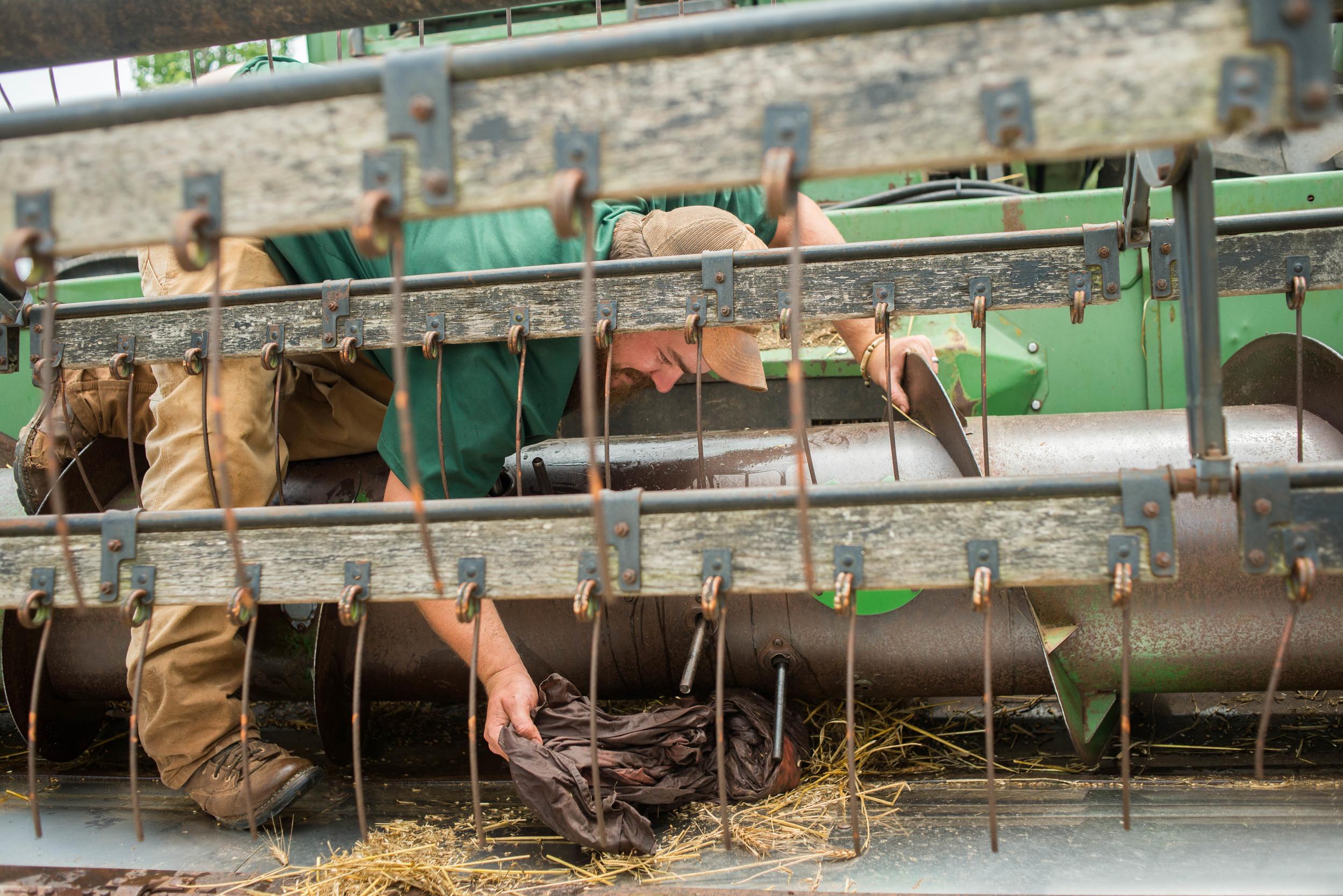 080215 farmer 12 AJG.jpg