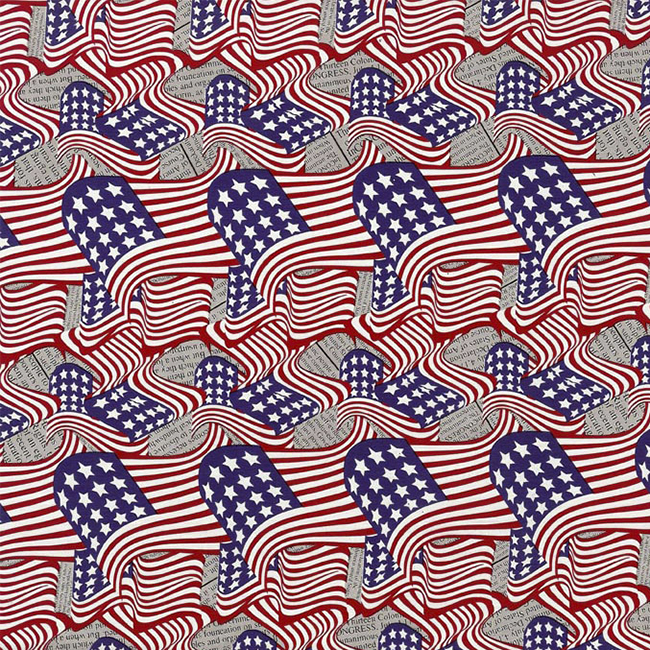 WTP-167 American Flag-Newsprint.jpg