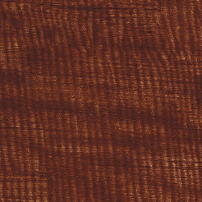 WTP-295 Medium Brown Willow.jpg