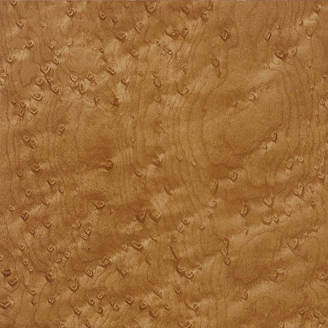 WTP-371 Birdseye Maple.jpg