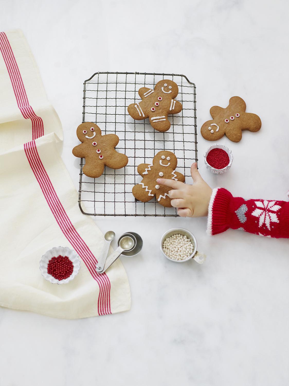 Gingerbread_230.jpg
